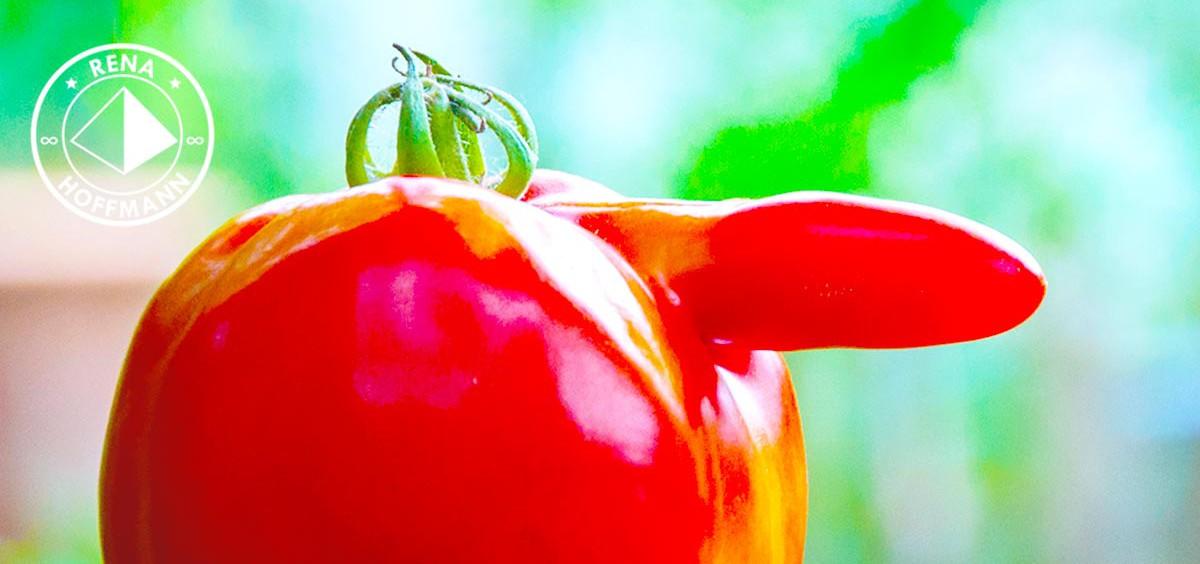 Der oder die Tomate?