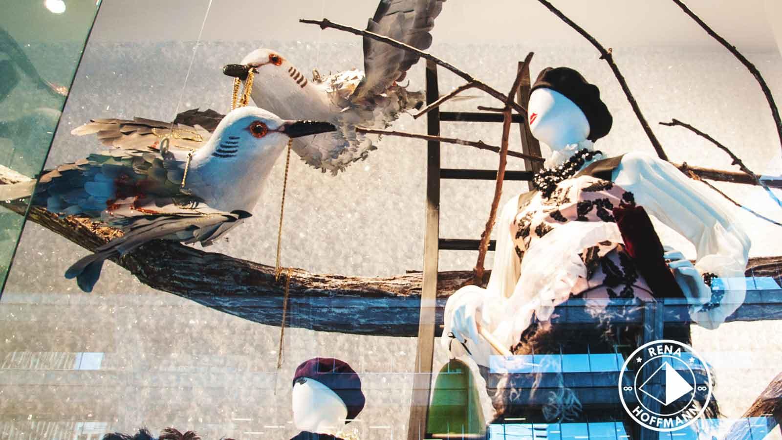 bird-toronto-foto-rena-hoffman.jpg